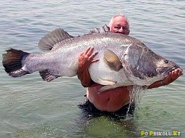 фотоприколы рыбацкие:
