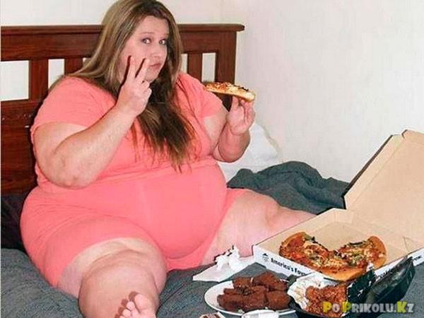 Жир приколы картинки